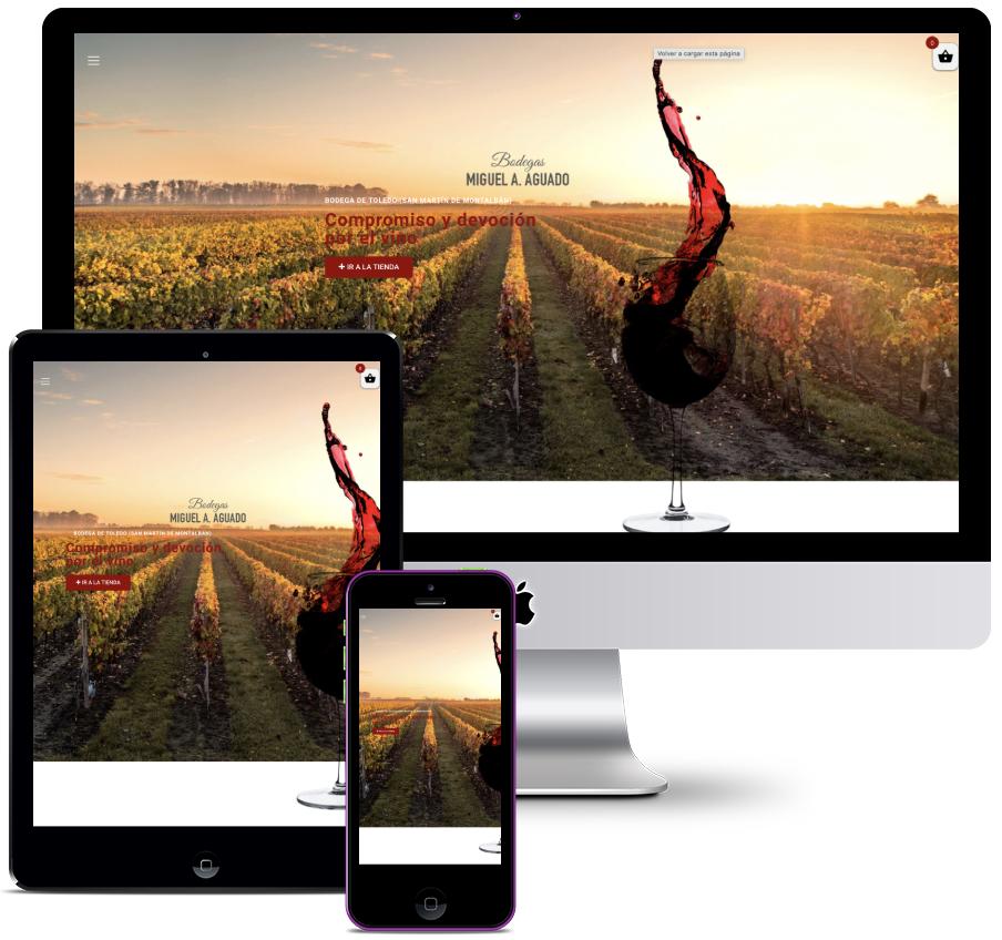 Web for Toledo wine cellar