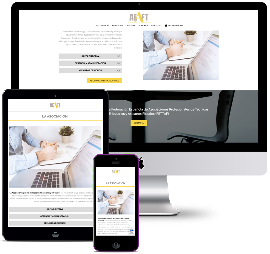 Web for a Tax Consulting Association