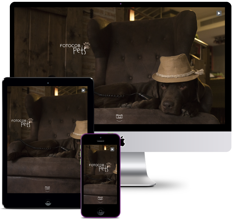 Web for professional photographer